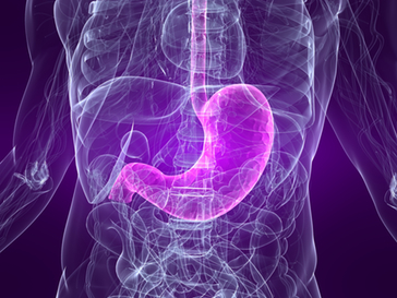 probiotics may treat IBD via digestive bacteria